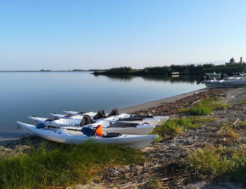 Kayak in Cabras lagoon